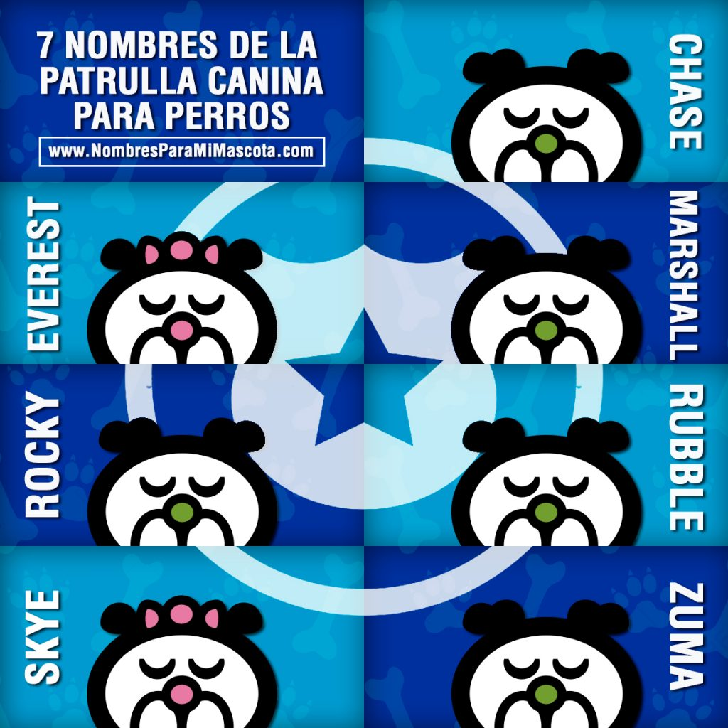 7-NOMBRES-PERSONAJES-PATRULLA-CANINA-PARA-PERROS