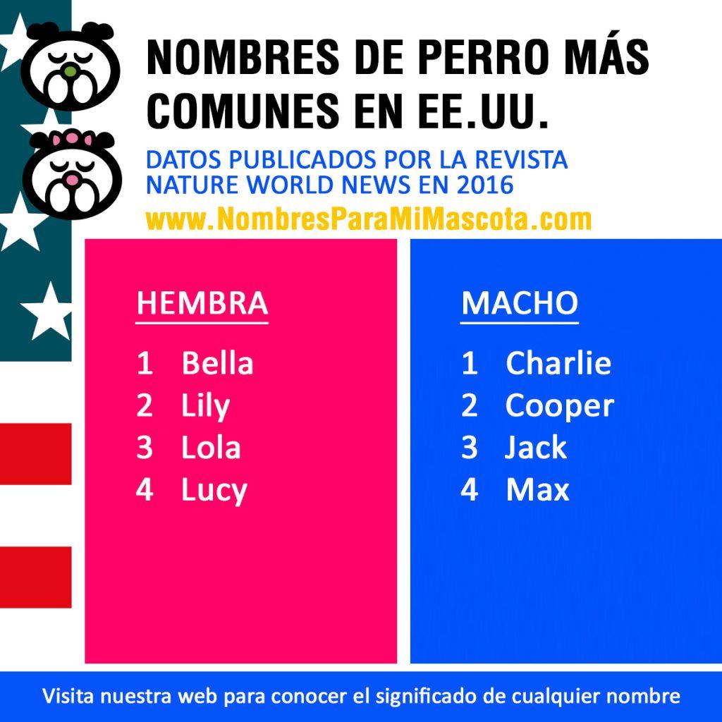 nombres-perro-mas-comunes-en-usa-2016
