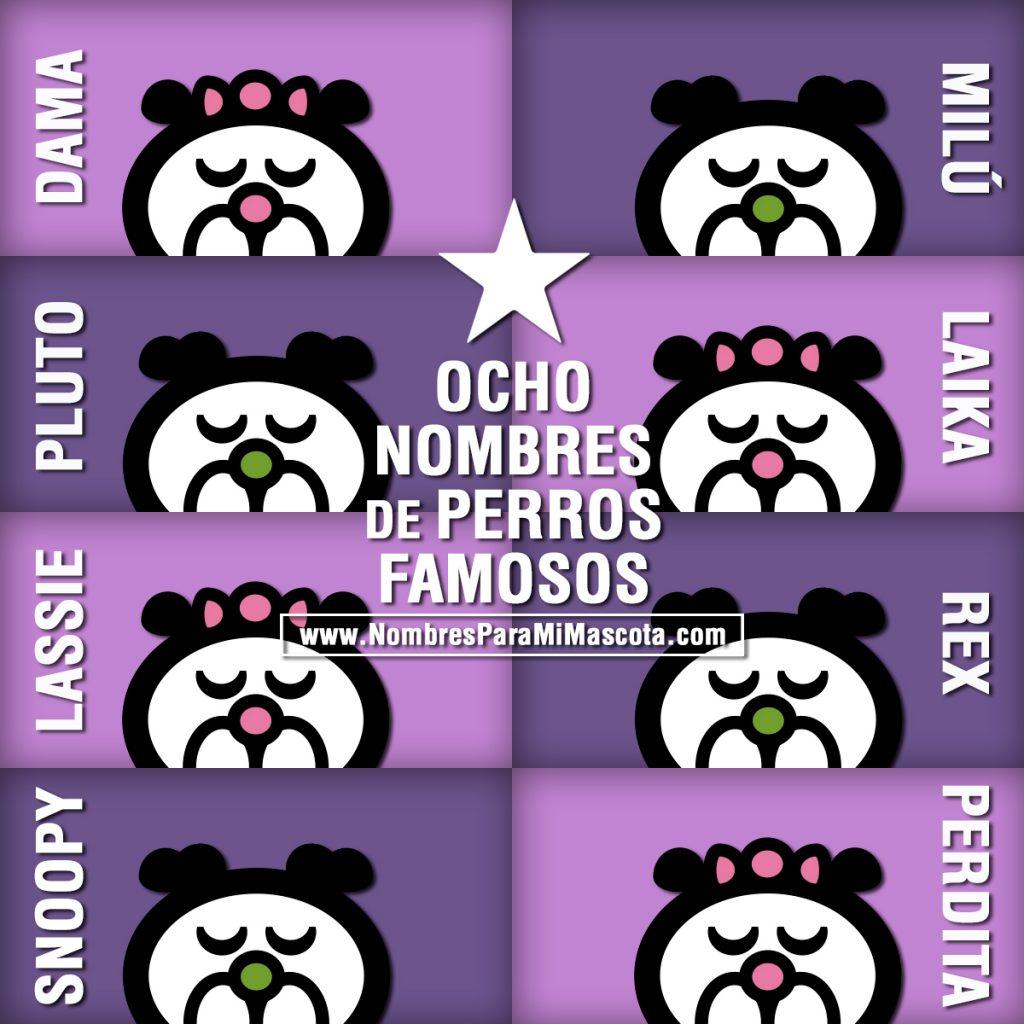 8-NOMBRES-DE-PERROS-FAMOSOS